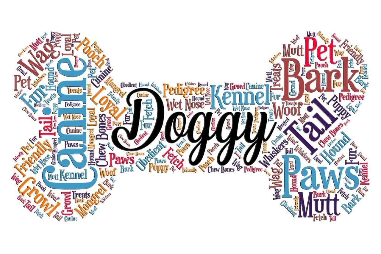 wordart, dog, bone